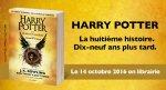 harry potter francia